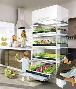 nano-garden-1.jpeg.492x0_q85_crop-smart